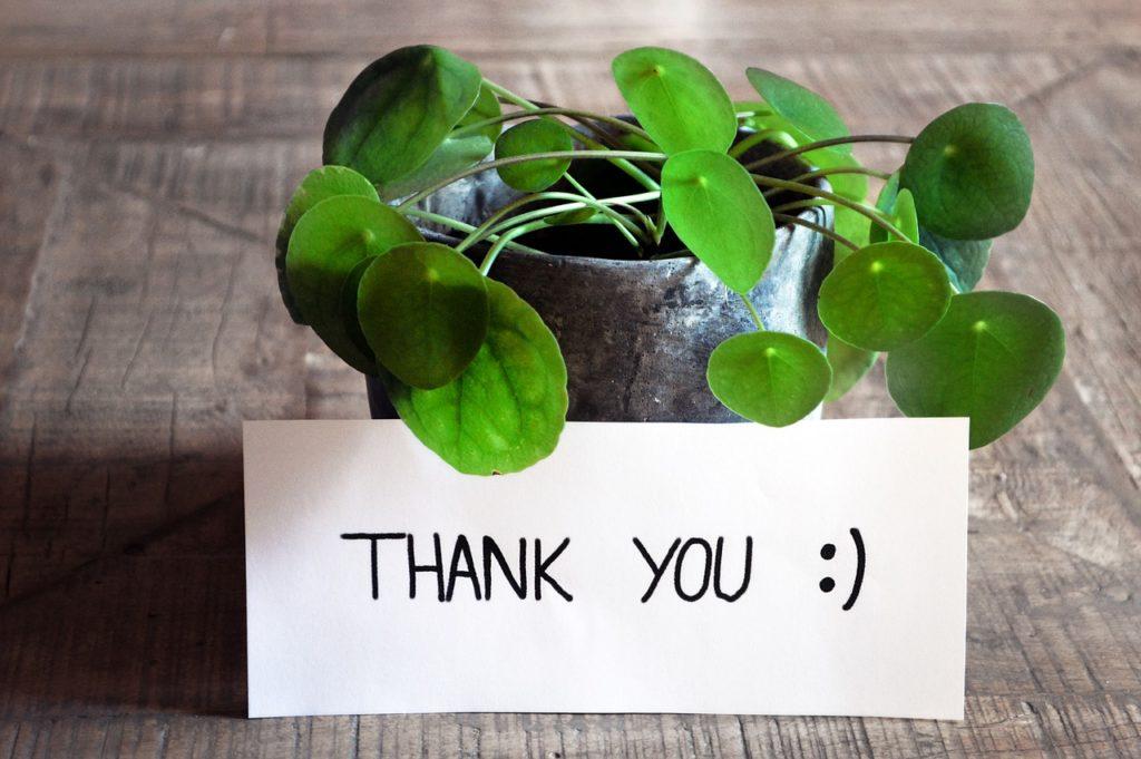 thank you, thank you card,